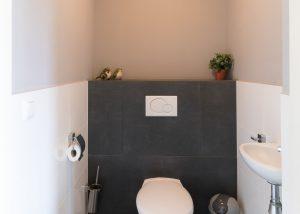toilet Skip